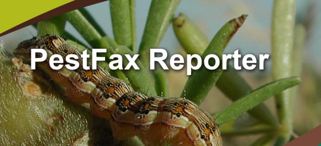 PestFax Reporter splash screen