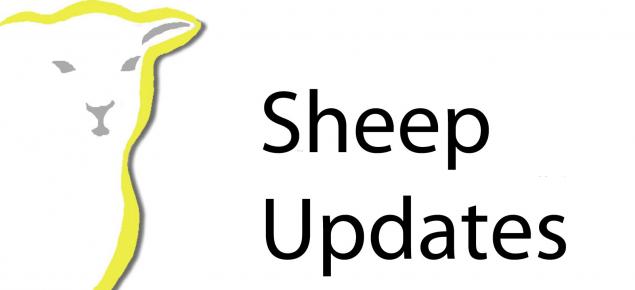 Sheep Updates logo