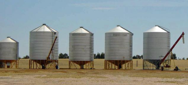 Silos filled with grain on a farm.