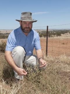 "WA Grain Biosecurity Officer Jeff Russell is asking all players in the state's grain industry to adopt a ""Come clean, Go clean"" philosophy to be practiced on farms."