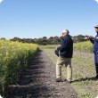 DAFWA Research officers Mark Seymour and Raj Malik