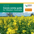 Cover of 2018 Canola Variety Guide