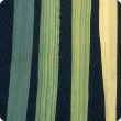 Pale yellow, iron deficient leaves, most showing prominent green veins (right), compared with dark green healthy leaf (left)