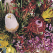 Flower arrangement of Western Australian native flowers including wax flowers, Banksia's, Kangaroo Paw and Verticordia.