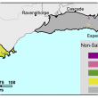 Broadscale map (1:250 000) of the Albany to Esperance Agzone showing the distribution of non saline semi wet soils. Esperance has minor distrbution of 50–100%, 25–50% and 3–10%. The Albany region is different with mainly 3–10% non saline seasonally wet.