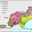 Broad scale map (1:250 000) of the Stirling to Ravensthorpe Agzone showing the distribution of deep sandy duplexes. Distribution is  25–50% from Boxwood Hill to Fitzgerald, 3–10% from Bremer Bay to Jerdacuttup and 3–10%, 10–25%, with 25–50%.