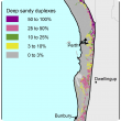 Broad scale map (1:250 000) of the Swan coastal plain Agzone showing the distribution of deep sandy duplexes. Distribution is scattered along the Darling scarp with 50–100% and 25–50%.