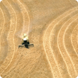 A photograph taken from above (probably taken from a low flying aeroplane) of a combine harvester harvesting a mature wheat crop. The patterns of the runs that the harvester has made through the crop can be seen and make an interesting wavy pattern