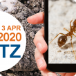 The Ant Blitz run from 24 Februray to 3 April 2020