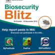 Biosecurity Blitz poster thumbnail
