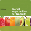 Market opportunities for WA fruit report cover