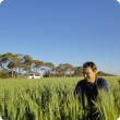 Martin Harries kneeling in a wheat crop