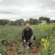 Martin Harries in Aphid trial