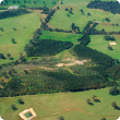 Farm forestry aerial photograph of permanent planting