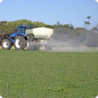 Spreading lime onto spring pasture at South Bodallin.