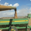 Unloading grain into a chaserbin