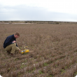 Bulk density measurements to help determine changes in soil organic carbon stocks