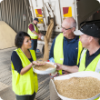 Oats being delivered to bulk handling facility