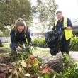 Checking green waste