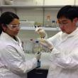 Molecular test in the laboratory.