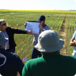 Christine Zaicou-Kunesch discussing wheat research findings at the NAG field day