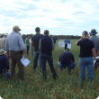 NAMI field day in paddock at Merredin Research Station