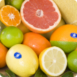 Types of citrus with the blue sticker and WA birthmark symbol