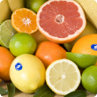 Different types of Citrus fruit with the WA citrus WA birthmark sticker