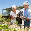 DAFWA's Don Telfer (right) and Alfred Cove resident Joy Moloney