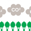 Trees capture and store (sequester) carbon dioxide