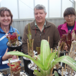 2 DAFWA staff and an importer in a glasshouse behind a table with plants in the foreground