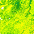 Screen capture of an NDVI image from the PRS application