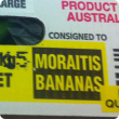 A box of bananas that have been inspected and stamped with a sticker saying passed quarantine