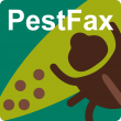 Pestfax touch icon