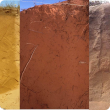 Yellow deep sand Eradu sandplain (left), Red deep sand Murchison (centre), Brown deep sands Kukerin (right)