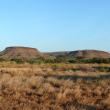 Photograph of Pilbara pasture in fair condition
