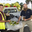 Queensland fruit fly response