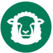 Sheep Condition Scoring app icon