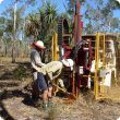 Soil survey on cockatoo sands in the Kimberley region of WA