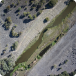 A recent Department of Agriculture and Food weed surveillance trial involved members of the Serpentine-Jarrahdale Landcare Group evaluating about 16 000 images taken along the Serpentine River from an unmanned drone, resulting in the identification of the