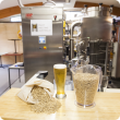 Malt barley testing at laboratory