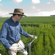 Dr Ben Biddulph at the frost research trial taking observations with crop monitoring equipment
