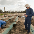 Measuring the wetting pattern beneath drip irrigation