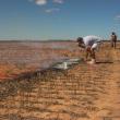 Assessing burnt stubble