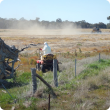 herbicide application to control three-horned bedstraw
