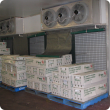 The photo shows a forced air cooling  setup at a commercial flower exporters packing shed
