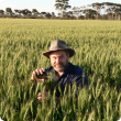 DPIRD grains biosecurity officer Jeff Russell, has urged growers to monitor crops for aphids and to report any sightings using the department's MyPestGuide Reporter app.