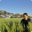 Department research officer Martin Harries works on the Focus Paddock project which has collected data from 184 farm paddocks from across the Wheatbelt to provide a unique insight into the State's grains industry and emerging challenges.