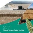 2014 Wheat Variety Guide cover