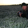 Photo caption: Department of Agriculture and Food researcher Ben Biddulph, pictured monitoring frost levels in a paddock at Cuballing, has been honoured for his contribution to the grains industry with the 2014 Grains Research and Development Corporation